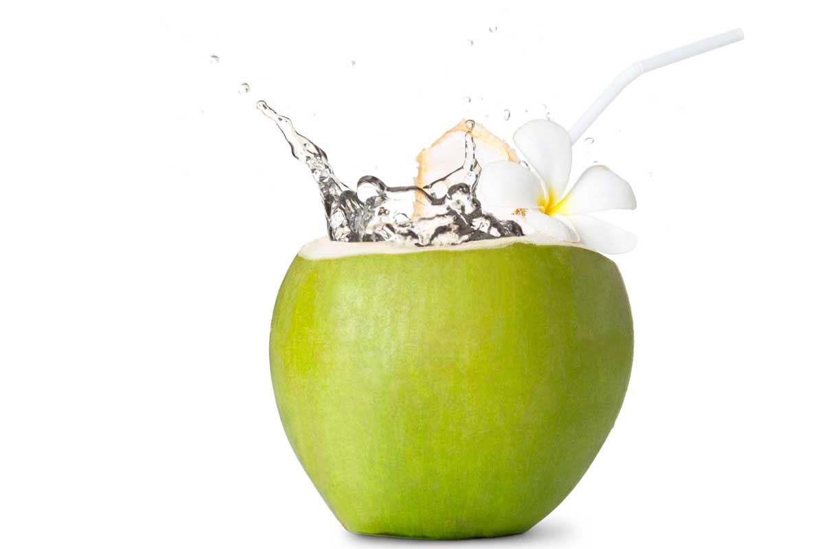 Tender Coconuts Kars